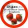 Steam Stones Aardbei  bestel ze nu bij uw groothandel Shisha Import